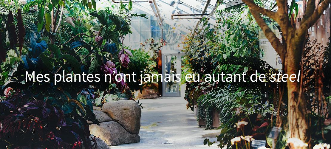 Donnez du style à vos plantes avec Mavisteel